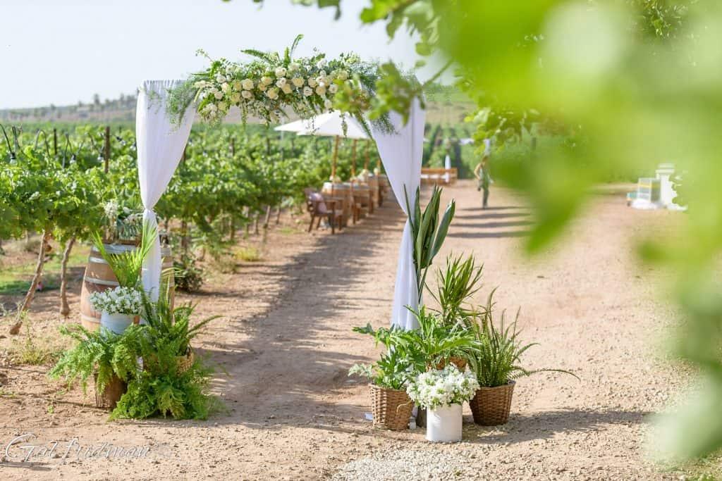 עיצוב לחתונה בפרדס בטבע